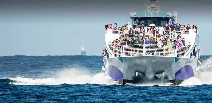 Front View Of Le Espada Whale Watching Boat